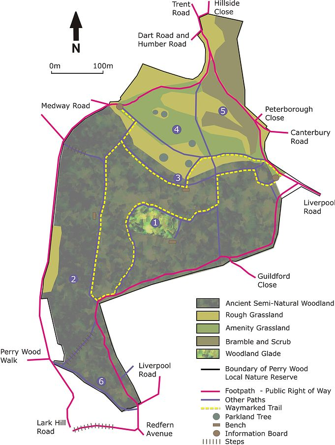 Perry Wood Site Map