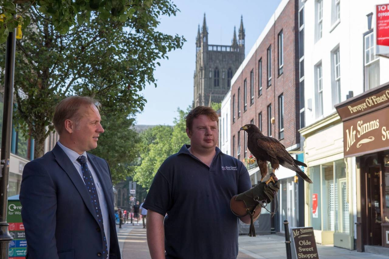 Worcester-City-Council-Leader-Marc-Bayliss-with-Harris-Hawk-and-handler-Mitchell-Wright