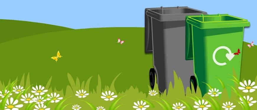 Summer_bins2